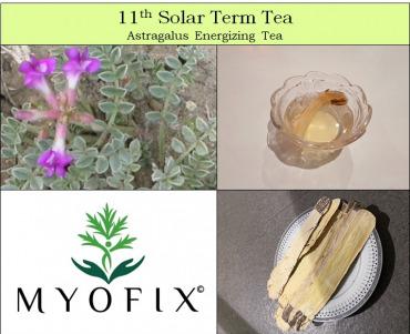 11th Solar Term Tea
